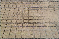 Vegetated Porous Pavements - Geoblock